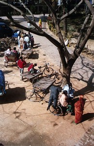 The rickshaws are all bicycle-driven. A ten-minute ride costs a foreigner about fifteen taka (or less, if you are prepared to haggle in Bangla). A hundred taka is approximately 100 British pence.